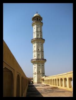 Sargasuli - Jaipur
